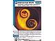 Gear No: 4617061  Name: Ninjago Masters of Spinjitzu Deck #1 Game Card 35 - Elemental Shift - International Version