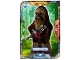 Lot ID: 164372996  Gear No: sw1de013  Name: Star Wars Trading Card Game (German) Series 1 - # 13 Chewbacca Card