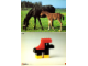 Book No: 9055b3  Name: Set 9055 Activity Card 3 - Horse (120246)