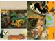 Book No: 9160b3  Name: Set 9160 Activity Card 3 - Tiger and Panda (120330)