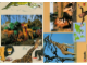 Book No: 9160b5  Name: Set 9160 Activity Card 5 - Giraffe and Lion (120330)