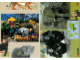 Book No: 9160b6  Name: Set 9160 Activity Card 6 - Elephant and Chimpanzee (120330)