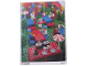 Book No: 9356b02  Name: Set 9356 Activity Card 2