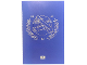 Book No: B5004932  Name: Passport Picture Book from Travel Building Suitcase