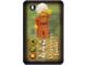 Gear No: 4189436pb05  Name: Orient Card Baddies - Maharaja Lallu