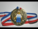 Gear No: 4202574  Name: Medal with Ribbon, Soccer with removable White/Blue Minifig Player shirt #5