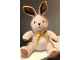 Gear No: 852217bunny  Name: Duplo Bunny / Rabbit Plush (852217)
