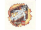 Gear No: 924522B  Name: Tattoo (Temporary Body Print), Pirate Skeleton in Treasure Chest Pattern