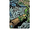 Gear No: BioGMC258  Name: Bionicle Great Mask Challenge Game Card 258