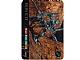 Gear No: BioLAM132  Name: Bionicle Lamincard 132