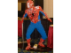 Gear No: Spiderman1  Name: Spider-Man, Life-Size (Glued)