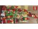 Gear No: cc06AuNZ  Name: Christmas Card - 2006 (Exclusive for Lego Club Australia & New Zealand)