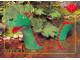 Gear No: pcLB213  Name: Postcard - Legoland Parks, Legoland Billund - Castle Land, The Sea Serpent (DK027)