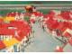 Gear No: pcLS23  Name: Postcard - Legoland Parks, Legoland Sierksdorf - Miniland 3