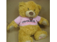 Gear No: plush02  Name: Teddy Bear Plush with Legoland California Pink Shirt