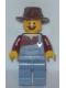 Minifig No: tlm043  Name: Hank Haystack