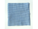 Part No: dupcloth02  Name: Duplo Cloth 9 x 9 with Blue and White Checkered Pattern (3605)