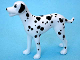 Part No: dalmatian02  Name: Dog, Scala with Dalmatian with Black Ears Pattern (Domino)