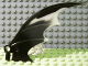 Part No: 55706pb02  Name: Dragon Wing 8 x 10, Glow In Dark Opaque Trailing Edge