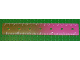 Part No: 48176pb01  Name: Clikits Ruler, 6 inch / 16 cm, 7 holes, color graduating to Trans-Dark Pink