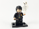 Set No: colhp  Name: Harry Potter in School Robes, Harry Potter & Fantastic Beasts (Complete Set with Stand and Accessories)