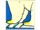 Part No: 2756pb179  Name: Duplo Tile 2 x 2 x 1 with Polar Bear Mosaic Picture 17 Pattern (Set 1079)