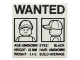 Part No: 3068bpb0903  Name: Tile 2 x 2 with Groove with 'WANTED' Minifigure Front and Side Mugshots Poster Pattern