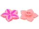 Part No: clikits135pb01  Name: Clikits Icon, Flower 5 Pointed Petals 2 x 2 Large with Pin, Dark Pink Petal Highlights