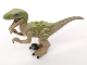 Part No: Raptor06  Name: Dino Raptor with Black Claws and Olive Green Back - Complete Assembly (Delta) (75917)