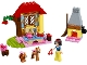 Set No: 10738  Name: Snow White's Forest Cottage