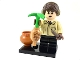 Set No: colhp  Name: Neville Longbottom, Harry Potter & Fantastic Beasts (Complete Set with Stand and Accessories)