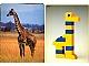 Book No: 9055b2  Name: Set 9055 Activity Card 2 - Giraffe (120246)