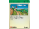 Book No: 9603b25AU  Name: Set 9603 Activity Card Exploration 18 - Rock and Roll AUS version (117922)