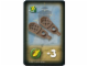 Gear No: 4189435pb06  Name: Orient Card Items - Snowshoes