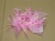 Gear No: 4494546  Name: Hair Tie, Pink Ribbon and Pearl