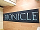 Gear No: 4536592  Name: Display Flag Cloth, Bionicle Name style 5
