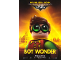 Gear No: 5005351  Name: The LEGO Batman Movie Poster - Robin
