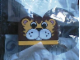 Gear No: KC142  Name: Basic Style Printed Brick Key Chain - Lion with Yellow Plate