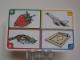 Gear No: create58  Name: Creationary Game Card 58 Strawberry
