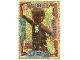Gear No: njo2deLE18  Name: Ninjago Trading Card Game (German) Series 2 - LE18 Echo Zane Card
