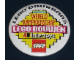 Gear No: pin058  Name: Pin, Lego Bouwbaas, Voorronde Wereldkampioenschap Lego Bouwen