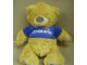 Gear No: plush03  Name: Teddy Bear Plush with Legoland California Blue Shirt