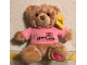 Gear No: plush04  Name: Teddy Bear Plush with Legoland California Pink Shirt and Heart Foot