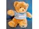 Gear No: plush11  Name: Teddy Bear Plush with Legoland Windsor Light Blue Shirt and Blue Star on Foot