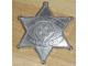 Gear No: starbadge  Name: Badge, Legoredo Sheriff Star