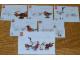 Instruction No: 4002014  Name: HUB Birds