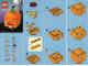 Instruction No: 40055  Name: Pumpkin polybag