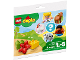 Original Box No: 30326  Name: Duplo Farm polybag