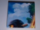 Part No: 3068bpb0572  Name: Tile 2 x 2 with Groove with Ninjago (Cole) Pattern 2