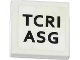 Part No: 3068bpb0829  Name: Tile 2 x 2 with Groove with 'TCRI' and 'ASG' Pattern (Sticker) - Set 79104